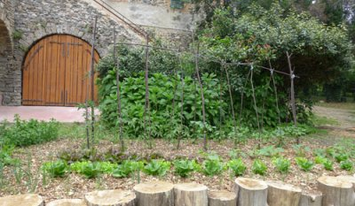 Potager au Camping Isis